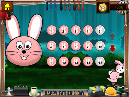 Ninja Rabbit Pro screenshot 8