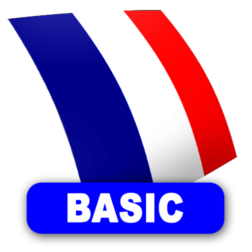 French FlashCards BASIC