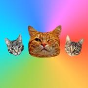 Autocollants de chat pour iMessage : Stickers