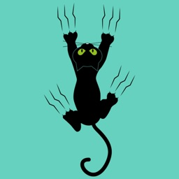 Black Funny Cat Stickers