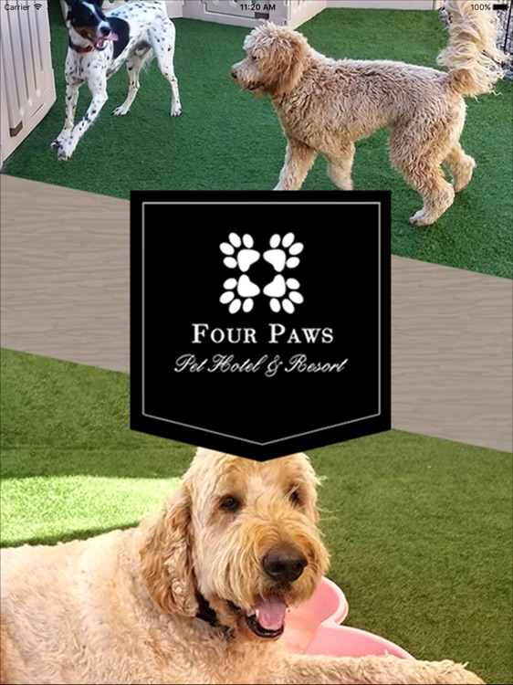 Four Paws Pet Hotel & Resort HD