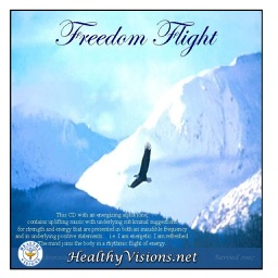 Freedom Flight for iPad