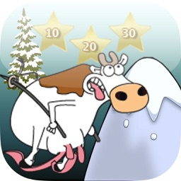 The Crazy Skiing Cow