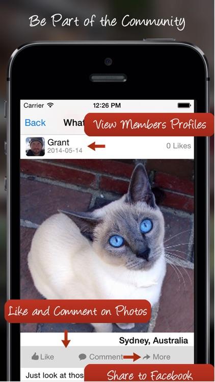 Tag A Cat - The Cat Photo App screenshot-3
