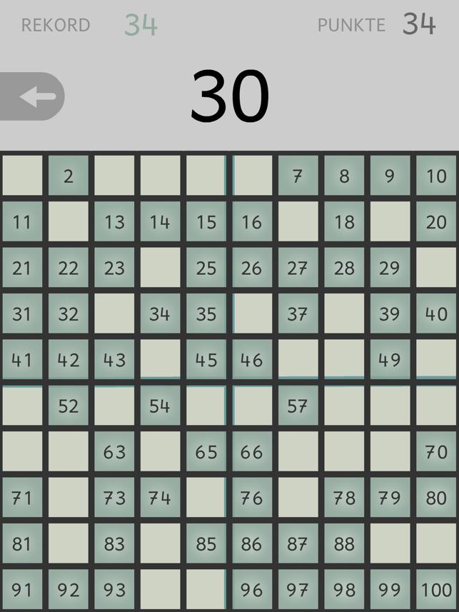 Zahlensucher - Orientierung im Hunderterfeld Screenshot