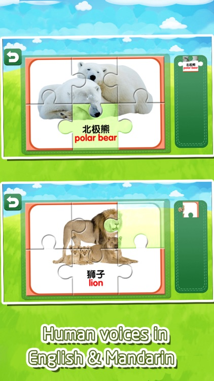 Flashcards jigsaw puzzles game for kids and baby screenshot-3
