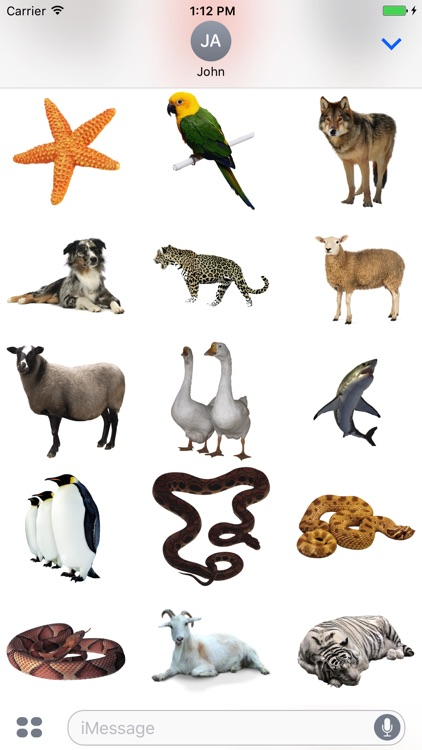 Best Animals Stickers Pack