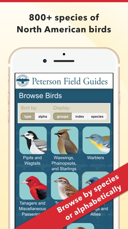 Peterson Bird Field Guide screenshot-0