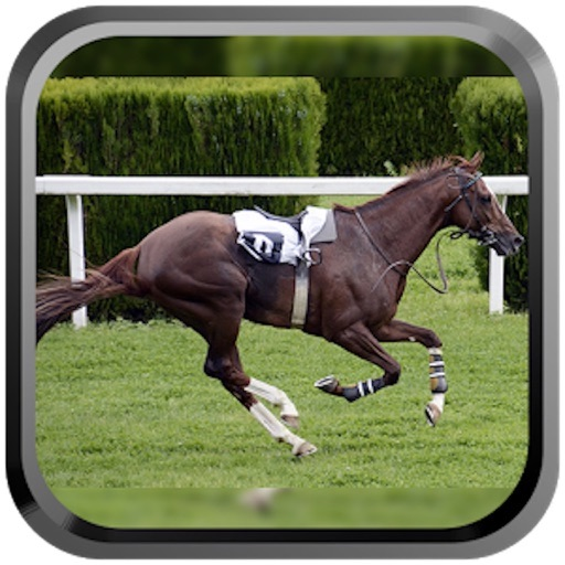 Derby Quest: Horse Breed-ing and Racing Champion