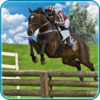 Muhammad Arif Jamil - Ultimate Horse Racing:3d artwork