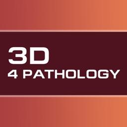 Pathology 3D Constructor