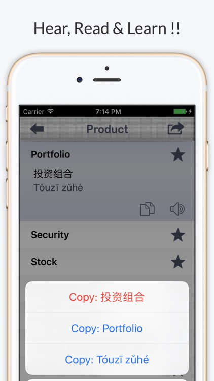 Financial Chinese Pro - Phrases & Vocabulary screenshot-3