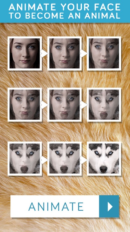 Insta Animal: Picture Editor, effects & fun faces