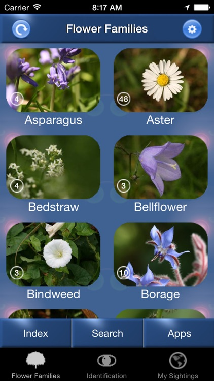 Wild Flower Id Netherlands Automatic Recognition screenshot-0
