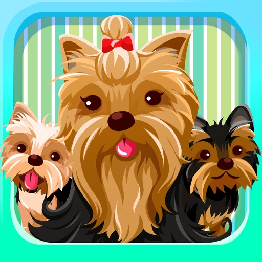Yorkie Emoji:Yorkshire Terrier Dog Sticker App