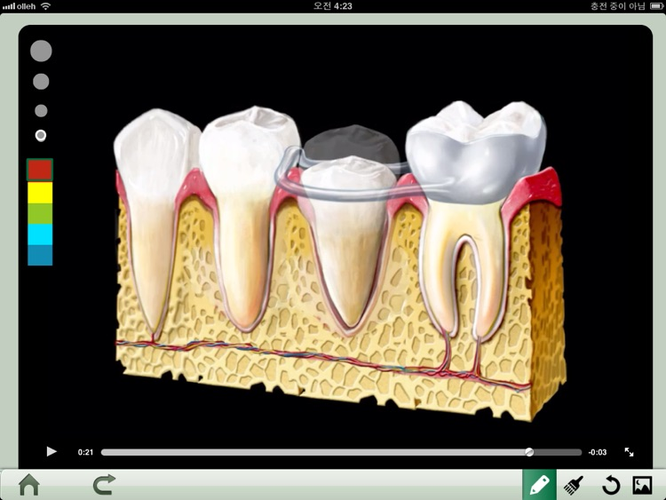 Dental iClinic screenshot-2