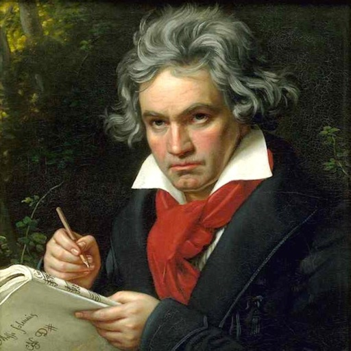 BeethovenQuartets2