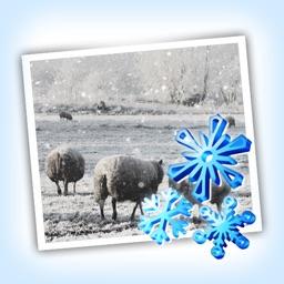Snow Daze HD