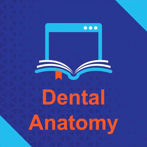 Dental Anatomy Exam Questions 2017 App Data & Review - Education ...