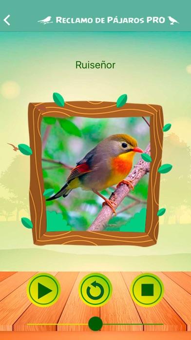 download Reclamos de Pájaros PRO apps 3