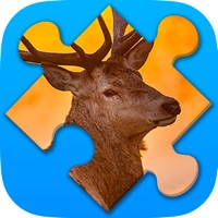 Codes for Animals Jigsaw Puzzles 2017 Hack