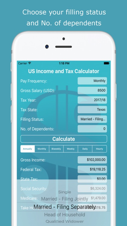 US Income and Tax Calculator screenshot-4