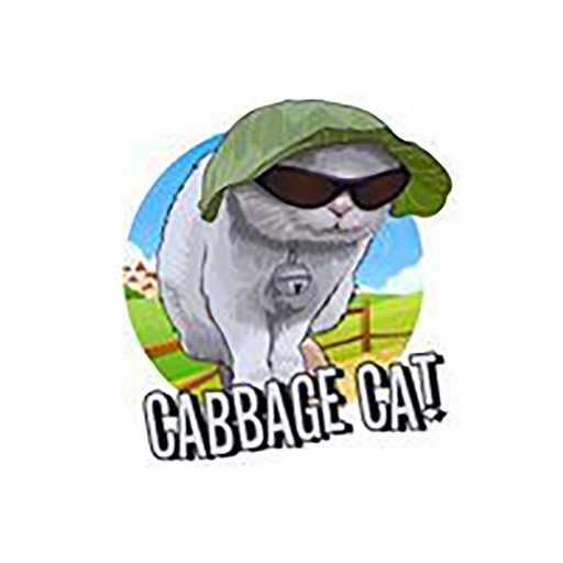 cabbagecatmemes