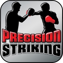 Precision Boxing Coach Lite