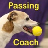 Flyball Passing Coach Reviews