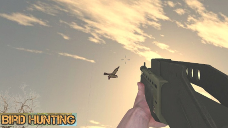 Birds Sniper Shooting