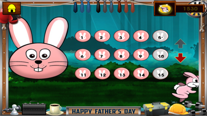 Ninja Rabbit Pro screenshot 3