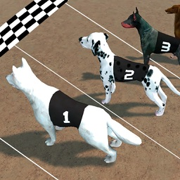 Crazy Dog Racing : Chase Racing Bunny With Pet Dog