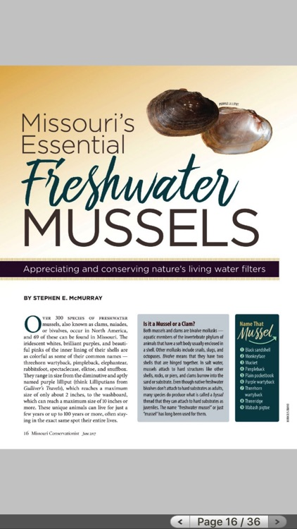 MO Conservationist Magazine screenshot-3