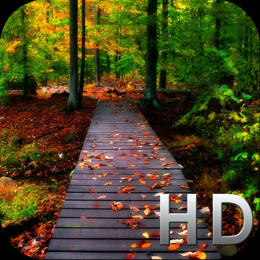 Hd Wallpaper Of Nature: HD Wallpapers And Backgrounds By Ali Hassan Bhatti