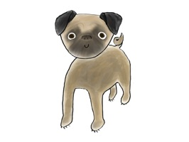 Pug Powa