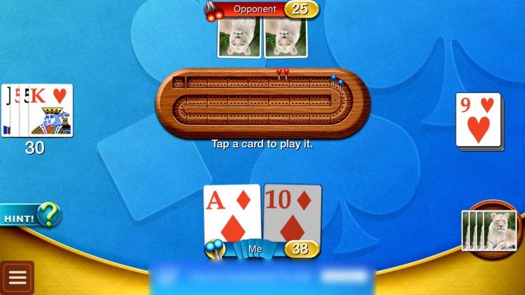 Cribbage - Family Crib & Peg Game screenshot-3