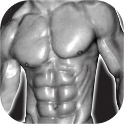 Six Pack Perfect ABS Workout Coach