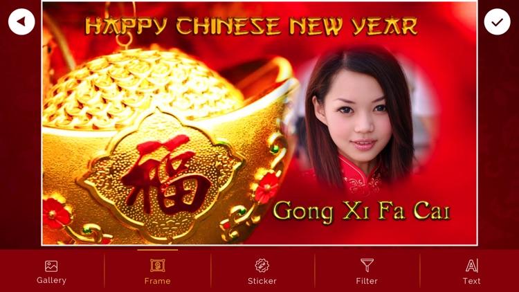Chinese New Year - 中国新年
