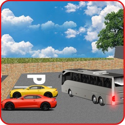 City Bus Transport Service