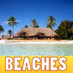 Beach Paradise Pics