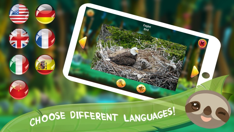 Baby Forest: Animals for Kids screenshot-4