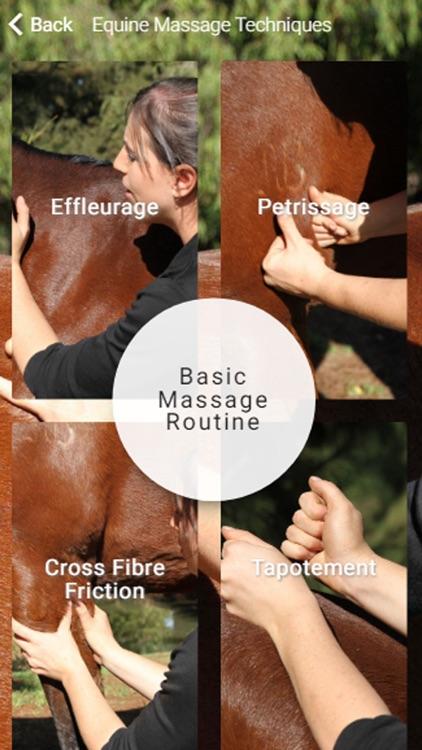 Equestricare Horse Massage screenshot-3