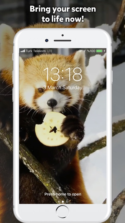 Live Wallpaper Plus screenshot-0