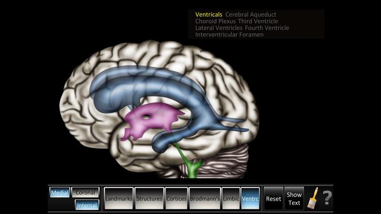 Cerebrum ID screenshot-4