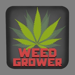 Weed Grower