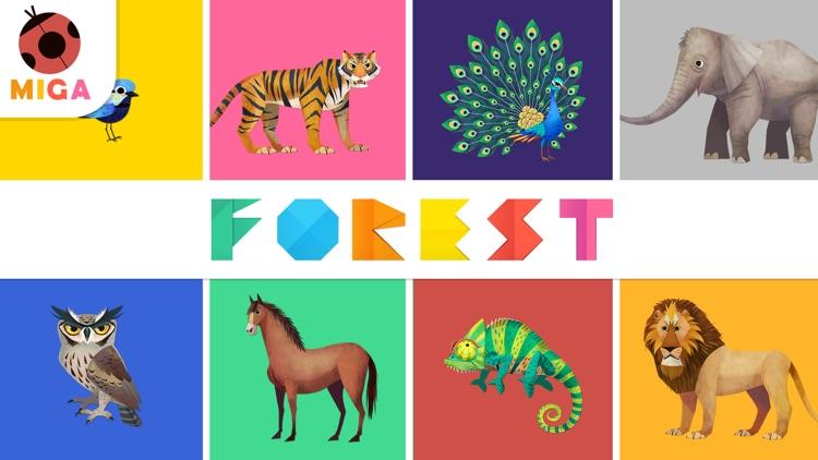 Miga Forest