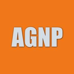 Adult Gero Nurse Practitioner