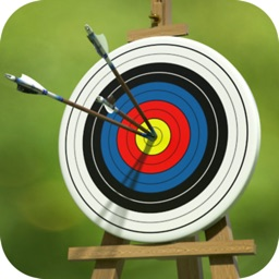 Archery Target Master Pro