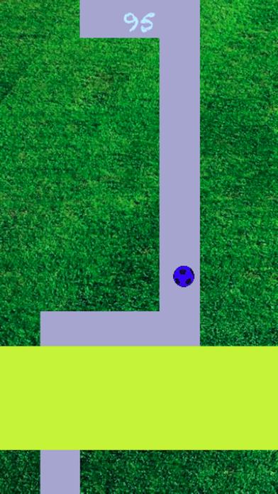 Line Roll - Premium screenshot 5