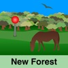 New Forest Maps Offline